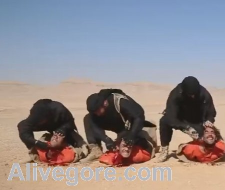 Isis Executes Five Hostages